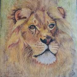 lion, 19 x 18 inch, shyam savale,19x18inch,thick paper,paintings,animal paintings,paintings for living room,paintings for office,paintings for hotel,pastel color,GAL02771239282