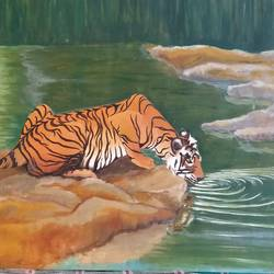 tiger 1, 28 x 17 inch, shyam savale,28x17inch,thick paper,paintings,wildlife paintings,animal paintings,paintings for dining room,paintings for living room,paintings for office,paintings for hotel,paintings for school,oil color,GAL02771239342