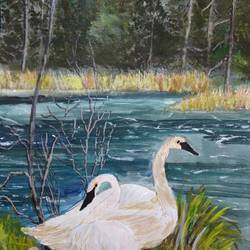 swans near lake, 15 x 11 inch, pinki saha,15x11inch,drawing paper,paintings,nature paintings | scenery paintings,animal paintings,acrylic color,paper,GAL02786539457