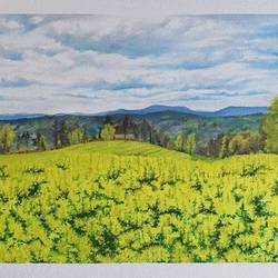 field of gold., 18 x 14 inch, sanaa rehman,18x14inch,canvas,wildlife paintings,figurative paintings,flower paintings,cityscape paintings,landscape paintings,still life paintings,nature paintings | scenery paintings,art deco paintings,photorealism,realism paintings,street art,oil color,GAL02417739559