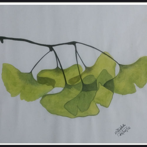 nature leaf, 14 x 11 inch, nitesh suthar,nature paintings,paintings for dining room,drawing paper,watercolor,14x11inch,GAL08464009Nature,environment,Beauty,scenery,greenery