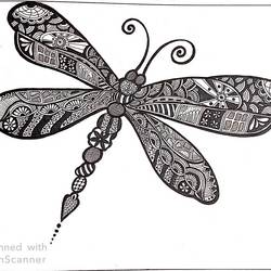 mandala art strapped in butterfly, 16 x 23 inch, anchal sharma,16x23inch,thick paper,drawings,abstract drawings,paintings for living room,paintings for office,paintings for hotel,paintings for school,paintings for hospital,paper,GAL02841540097