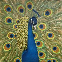 peacock bird , 18 x 18 inch, dipal rathod,18x18inch,canvas,paintings,nature paintings | scenery paintings,art deco paintings,animal paintings,realistic paintings,paintings for dining room,paintings for living room,paintings for bedroom,paintings for office,paintings for kids room,paintings for hotel,paintings for kitchen,paintings for school,paintings for hospital,acrylic color,GAL02852840255
