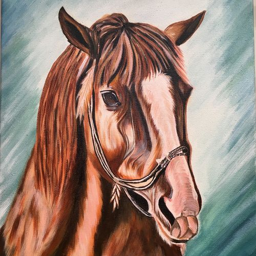 horse face acrylic canvas with stretcher, 12 x 16 inch, dipal rathod,12x16inch,canvas,paintings,wildlife paintings,figurative paintings,modern art paintings,conceptual paintings,art deco paintings,animal paintings,horse paintings,paintings for dining room,paintings for living room,paintings for bedroom,paintings for office,paintings for kids room,paintings for hotel,paintings for school,paintings for hospital,acrylic color,GAL02852840273