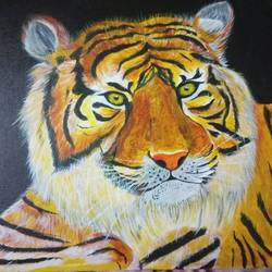 tiger, 12 x 12 inch, chandrani das,12x12inch,canvas,paintings,wildlife paintings,paintings for dining room,paintings for living room,paintings for bedroom,paintings for office,paintings for bathroom,paintings for kids room,paintings for hotel,paintings for kitchen,paintings for school,paintings for hospital,acrylic color,GAL01316940292
