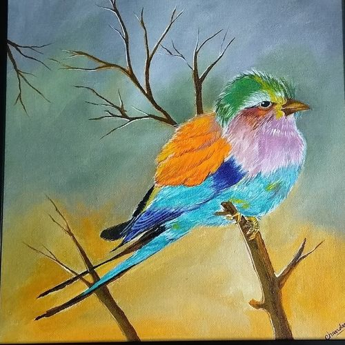 bird, 12 x 12 inch, chandrani das,12x12inch,canvas,paintings,wildlife paintings,paintings for dining room,paintings for living room,paintings for bedroom,paintings for office,paintings for bathroom,paintings for kids room,paintings for hotel,paintings for kitchen,paintings for school,paintings for hospital,acrylic color,GAL01316940341