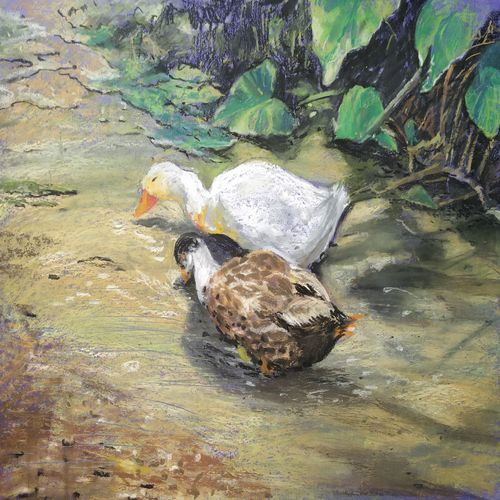 duck, 13 x 11 inch, soyli saha,13x11inch,drawing paper,paintings,realism paintings,paintings for dining room,paintings for living room,paintings for bedroom,paintings for office,paintings for bathroom,paintings for kids room,paintings for hotel,paintings for kitchen,paintings for school,paintings for hospital,pastel color,GAL0606540430