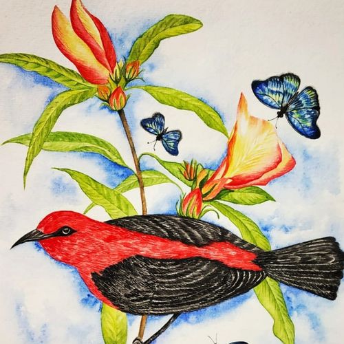 colourful nature1, 11 x 15 inch, salisalima ratha,11x15inch,renaissance watercolor paper,paintings,figurative paintings,watercolor,GAL02519840438