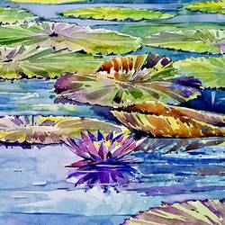 water lily pond, 11 x 14 inch, raji p,11x14inch,canson paper,paintings,abstract paintings,figurative paintings,foil paintings,landscape paintings,still life paintings,nature paintings | scenery paintings,paintings for dining room,paintings for living room,paintings for office,paintings for bathroom,paintings for kids room,paintings for hotel,paintings for kitchen,paintings for school,paintings for hospital,watercolor,GAL059040606