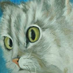 white cat, 10 x 12 inch, krishna ghosh,10x12inch,canvas,paintings,animal paintings,oil color,GAL02828840666