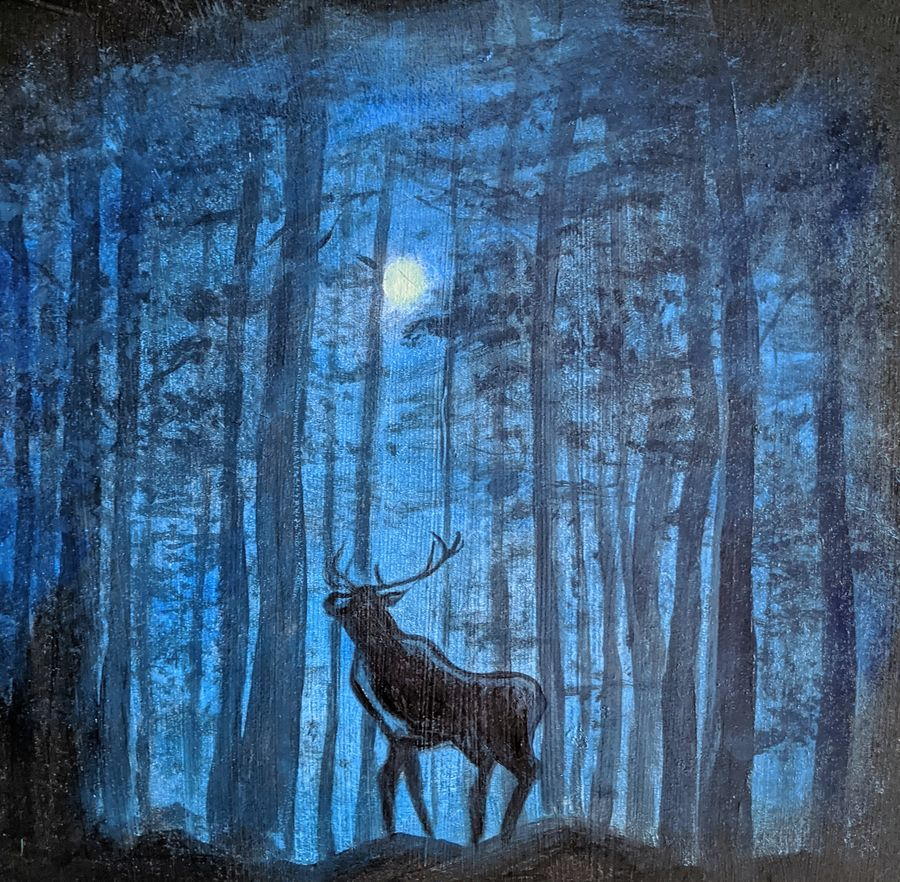 Stag on a winter night