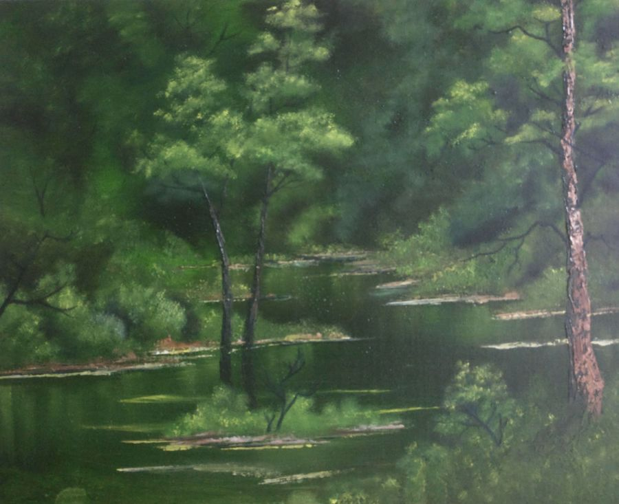 Green forest swamp