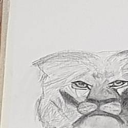 incomplete leo, 18 x 24 inch, khurshid bhat,18x24inch,canvas,drawings,abstract drawings,figurative drawings,paintings for dining room,paintings for bedroom,paintings for office,paintings for kids room,pencil color,GAL02840140732