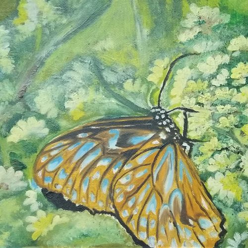 butterfly, 12 x 8 inch, ankita roy,12x8inch,canvas,paintings,wildlife paintings,nature paintings | scenery paintings,paintings for dining room,paintings for living room,paintings for bedroom,paintings for office,paintings for kids room,paintings for hotel,paintings for dining room,paintings for living room,paintings for bedroom,paintings for office,paintings for kids room,paintings for hotel,oil color,GAL02876040741