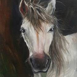 portrait of a horse, 10 x 12 inch, rambling tiger,impressionist paintings,paintings for office,horse paintings,canvas,oil paint,10x12inch,GAL08864079