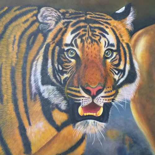 tiger, 31 x 25 inch, sneha petkar,31x25inch,canvas,wildlife paintings,photorealism paintings,photorealism,realism paintings,animal paintings,realistic paintings,paintings for dining room,paintings for living room,paintings for office,paintings for hotel,paintings for school,paintings for dining room,paintings for living room,paintings for office,paintings for hotel,paintings for school,acrylic color,GAL02902141029