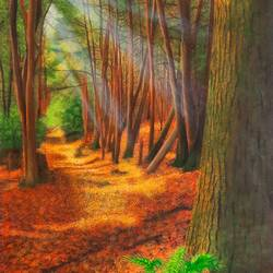 walk in the woods, 18 x 25 inch, sneha petkar,18x25inch,canvas,landscape paintings,nature paintings   scenery paintings,photorealism paintings,photorealism,realistic paintings,paintings for dining room,paintings for living room,paintings for bedroom,paintings for office,paintings for school,paintings for hospital,paintings for dining room,paintings for living room,paintings for bedroom,paintings for office,paintings for school,paintings for hospital,acrylic color,GAL02902141033