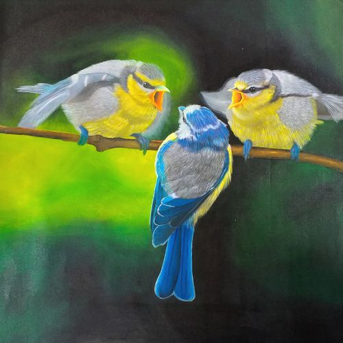 birds chat, 24 x 24 inch, sneha petkar,24x24inch,canvas,paintings,wildlife paintings,nature paintings | scenery paintings,photorealism paintings,photorealism,realism paintings,animal paintings,realistic paintings,paintings for dining room,paintings for living room,paintings for bedroom,paintings for office,paintings for hotel,paintings for school,paintings for hospital,paintings for dining room,paintings for living room,paintings for bedroom,paintings for office,paintings for hotel,paintings for school,paintings for hospital,acrylic color,GAL02902141035