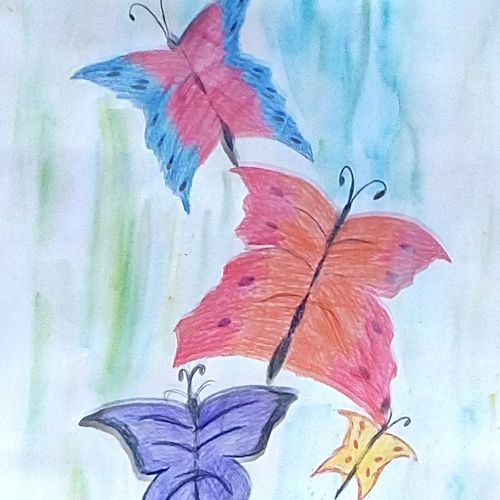 colorful butterfly's, 9 x 11 inch, mrs. kalyani lahon,modern art paintings,paintings for office,paper,pencil color,9x11inch,GAL06574109