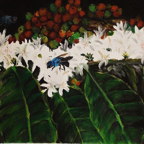 coffee blossom, 18 x 17 inch, nayana b.c,18x17inch,canvas,paintings,kalamkari painting,paintings for hospital,paintings for dining room,paintings for living room,paintings for office,paintings for hotel,paintings for school,acrylic color,oil color,GAL02908241114