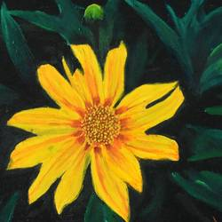 mexican sunflower, 12 x 12 inch, nayana b.c,12x12inch,canvas,paintings,nature paintings | scenery paintings,art deco paintings,paintings for living room,paintings for bedroom,paintings for office,paintings for hotel,paintings for school,acrylic color,oil color,GAL02908241146