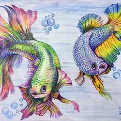colourful fish, 42 x 30 inch, snehal gawade,42x30inch,thick paper,paintings for kids room,fine art drawings,kids drawings,paintings for kids room,pencil color,GAL01974441171