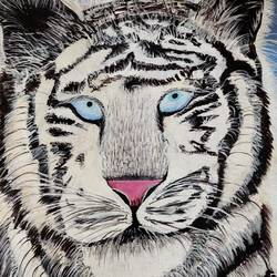 white tiger, 14 x 18 inch, shushma sarkar,14x18inch,canvas,paintings,animal paintings,paintings for dining room,paintings for living room,paintings for bedroom,paintings for office,paintings for bathroom,paintings for kids room,paintings for hotel,paintings for school,acrylic color,GAL02918141233