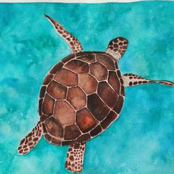 tortoise, 12 x 16 inch, shilpa parate,12x16inch,handmade paper,nature paintings | scenery paintings,paintings for dining room,paintings for living room,paintings for bedroom,paintings for bathroom,paintings for hotel,paintings for dining room,paintings for living room,paintings for bedroom,paintings for bathroom,paintings for hotel,watercolor,paper,GAL02737041275