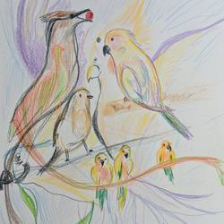 a fistful of life: a tribute to birds, 8 x 12 inch, manan sheel,8x12inch,drawing paper,drawings,conceptual drawings,pencil color,GAL02892741293
