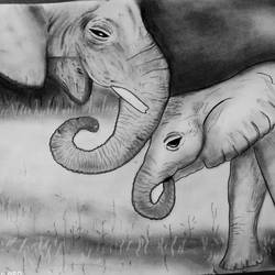 unconditional love, 12 x 18 inch, nancy agarwal,12x18inch,thick paper,drawings,figurative drawings,fine art drawings,impressionist drawings,charcoal,graphite pencil,paper,GAL02857241360