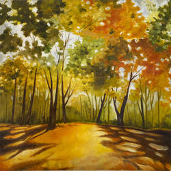 spring - 1, 26 x 26 inch, karuna mohindra,26x26inch,canvas,paintings,nature paintings | scenery paintings,oil color,GAL02932941657