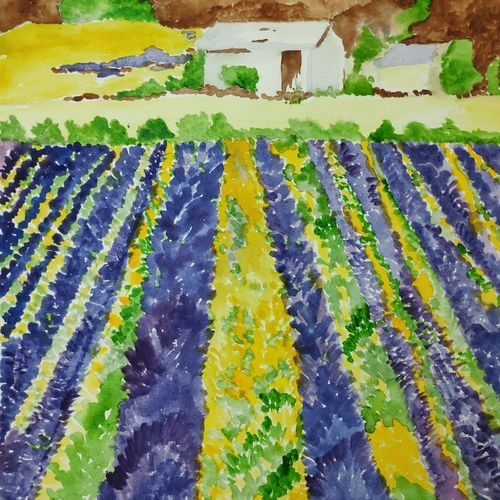 lavender fields with an old farmhouse, 10 x 14 inch, supriya barsode,10x14inch,paper,landscape paintings,impressionist paintings,paintings for dining room,paintings for living room,paintings for bedroom,paintings for office,paintings for bathroom,paintings for kids room,paintings for hotel,paintings for kitchen,paintings for school,paintings for hospital,paintings for dining room,paintings for living room,paintings for bedroom,paintings for office,paintings for bathroom,paintings for kids room,paintings for hotel,paintings for kitchen,paintings for school,paintings for hospital,acrylic color,watercolor,paper,GAL02914341761