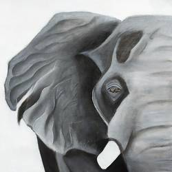 elephant 1, 12 x 17 inch, bhumika kumawat,12x17inch,canvas,paintings,abstract paintings,figurative paintings,modern art paintings,religious paintings,ganesha paintings | lord ganesh paintings,animal paintings,contemporary paintings,realistic paintings,love paintings,elephant paintings,paintings for dining room,paintings for living room,paintings for bedroom,paintings for office,paintings for bathroom,paintings for kids room,paintings for hotel,paintings for kitchen,paintings for school,paintings for hospital,acrylic color,charcoal,graphite pencil,GAL02800141787