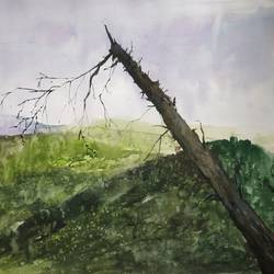 calm, 22 x 13 inch, soyli saha,22x13inch,thick paper,paintings,landscape paintings,paintings for dining room,paintings for living room,paintings for bedroom,paintings for office,watercolor,GAL0606542082