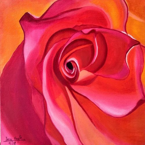 pretty in pink, 18 x 14 inch, tanu gupta,18x14inch,canvas,paintings,flower paintings,oil color,GAL02995442132