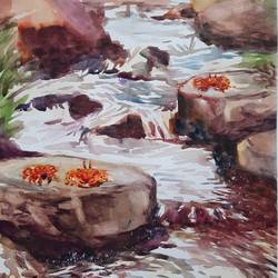 crabs in a waterfall , 12 x 17 inch, anshuman sikka,12x17inch,canson paper,paintings,watercolor,GAL02997242139