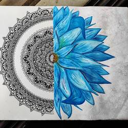 floral mandala, 8 x 12 inch, shruti rayan,8x12inch,thick paper,drawings,art deco drawings,conceptual drawings,fine art drawings,minimalist drawings,modern drawings,paintings for dining room,paintings for living room,paintings for bedroom,paintings for office,pen color,paper,GAL02640642173
