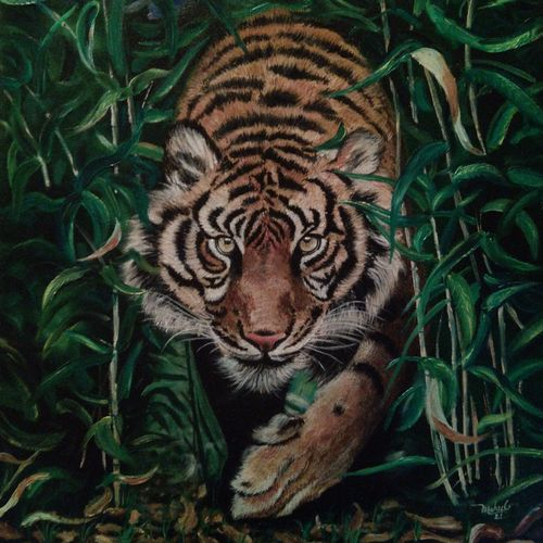 tiger, 20 x 24 inch, mehul boricha,20x24inch,canvas board,paintings,wildlife paintings,animal paintings,realistic paintings,paintings for dining room,paintings for living room,paintings for bedroom,paintings for office,paintings for kids room,paintings for hotel,paintings for kitchen,paintings for school,paintings for hospital,oil color,GAL02737742288