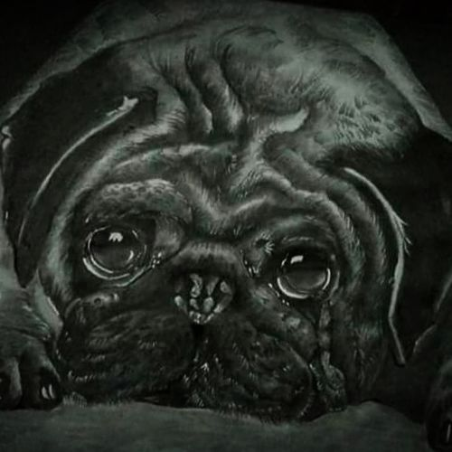 my favourite pug dog, 11 x 16 inch, sresthita mukherjee,11x16inch,paper,drawings,portrait drawings,paintings for dining room,paintings for living room,paintings for bedroom,paintings for office,paintings for bathroom,paintings for kids room,paintings for hotel,paintings for kitchen,paintings for school,paintings for hospital,charcoal,graphite pencil,paper,GAL03001142312
