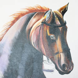 realistic wild horse painting, 24 x 36 inch, indiarts india,24x36inch,canvas,paintings,wildlife paintings,figurative paintings,animal paintings,horse paintings,paintings for dining room,paintings for living room,paintings for bedroom,paintings for office,paintings for hotel,acrylic color,GAL02992042325