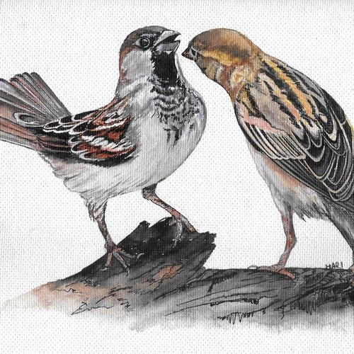 bird (sparrow), 13 x 9 inch, hari  kashyap,13x9inch,handmade paper,wildlife paintings,paintings for living room,paintings for kids room,paintings for hotel,paintings for school,paintings for hospital,paintings for living room,paintings for kids room,paintings for hotel,paintings for school,paintings for hospital,acrylic color,watercolor,paper,GAL0538442342