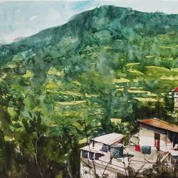 green, 16 x 12 inch, soyli saha,16x12inch,brustro watercolor paper,paintings,nature paintings | scenery paintings,paintings for dining room,paintings for living room,paintings for bedroom,paintings for office,paintings for bathroom,paintings for kids room,paintings for hotel,paintings for kitchen,paintings for school,paintings for hospital,watercolor,GAL0606542471