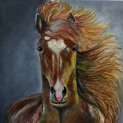 horse, 8 x 10 inch, poulami sen,8x10inch,canvas,paintings,wildlife paintings,acrylic color,GAL02960842506