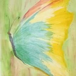 greene butterfly, 9 x 11 inch, mrs. kalyani lahon,wildlife paintings,paintings for bedroom,paper,poster color,9x11inch,GAL06574270