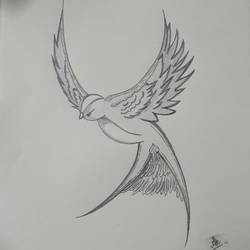 bird drawings, 10 x 12 inch, arnav khatri,10x12inch,drawing paper,drawings,paintings for dining room,paintings for living room,paintings for bedroom,paintings for office,paintings for bathroom,paintings for kids room,paintings for hotel,paintings for kitchen,paintings for school,paintings for hospital,graphite pencil,paper,GAL03049742719