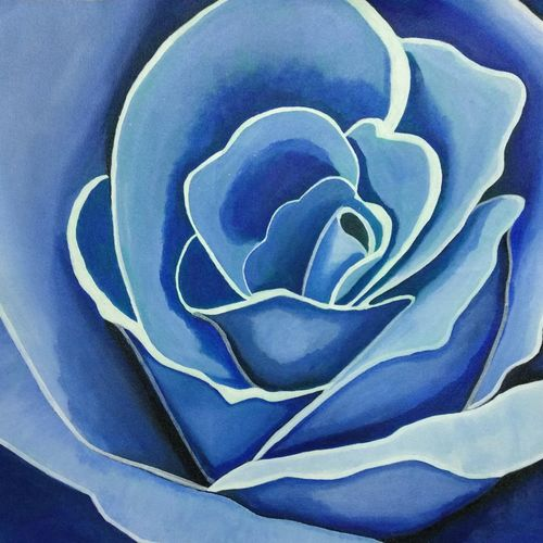 blue rose, 24 x 18 inch, neha chamankar,24x18inch,canvas,paintings,abstract paintings,flower paintings,minimalist paintings,contemporary paintings,paintings for dining room,paintings for living room,paintings for bedroom,paintings for office,paintings for kids room,paintings for hotel,paintings for school,paintings for hospital,acrylic color,GAL03061142938