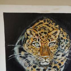 tiger on prawl, 20 x 24 inch, sangeetha oduvil,20x24inch,canvas,paintings,abstract paintings,figurative paintings,folk art paintings,religious paintings,realistic paintings,oil color,GAL03067943035