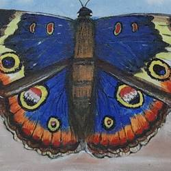 blue butterfly, 12 x 12 inch, preeti kadu,12x12inch,canvas,paintings,nature paintings | scenery paintings,animal paintings,paintings for dining room,paintings for living room,paintings for bedroom,paintings for office,paintings for bathroom,paintings for kids room,paintings for hotel,paintings for kitchen,paintings for school,paintings for hospital,acrylic color,GAL03077643178