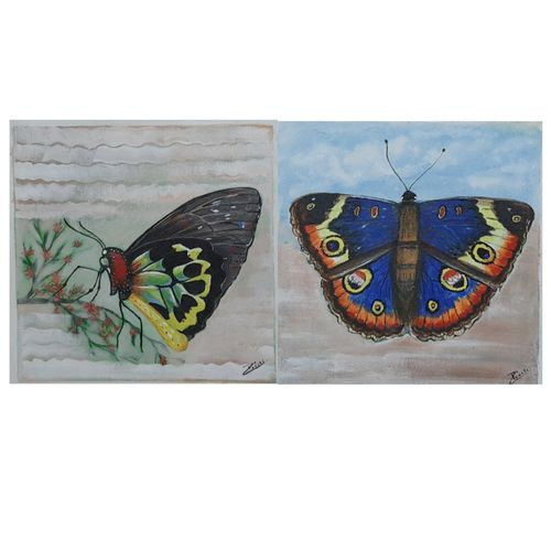 2 butterfly paintings (combo pack ), 24 x 12 inch, preeti kadu,24x12inch,canvas,paintings,nature paintings | scenery paintings,paintings for dining room,paintings for living room,paintings for bedroom,paintings for office,paintings for bathroom,paintings for kids room,paintings for hotel,paintings for kitchen,paintings for school,paintings for hospital,acrylic color,GAL03077643180