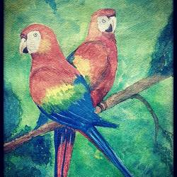 wild parrots, 11 x 15 inch, tushar  amonkar,11x15inch,handmade paper,animal paintings,paintings for dining room,paintings for living room,paintings for bedroom,paintings for office,paintings for kids room,paintings for hotel,paintings for school,paintings for hospital,paintings for dining room,paintings for living room,paintings for bedroom,paintings for office,paintings for kids room,paintings for hotel,paintings for school,paintings for hospital,watercolor,GAL03080143190